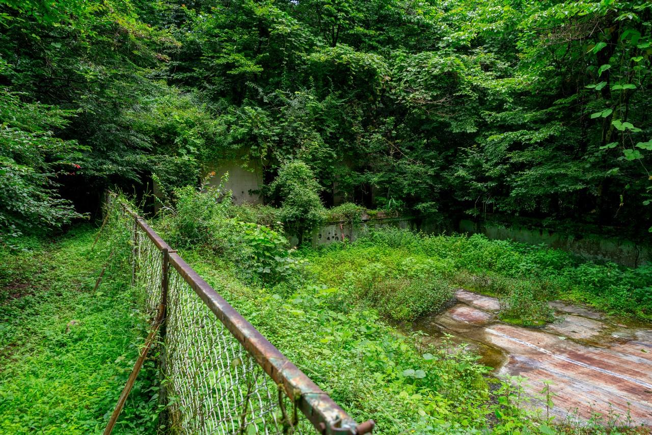 200726檜原滝巡り-050