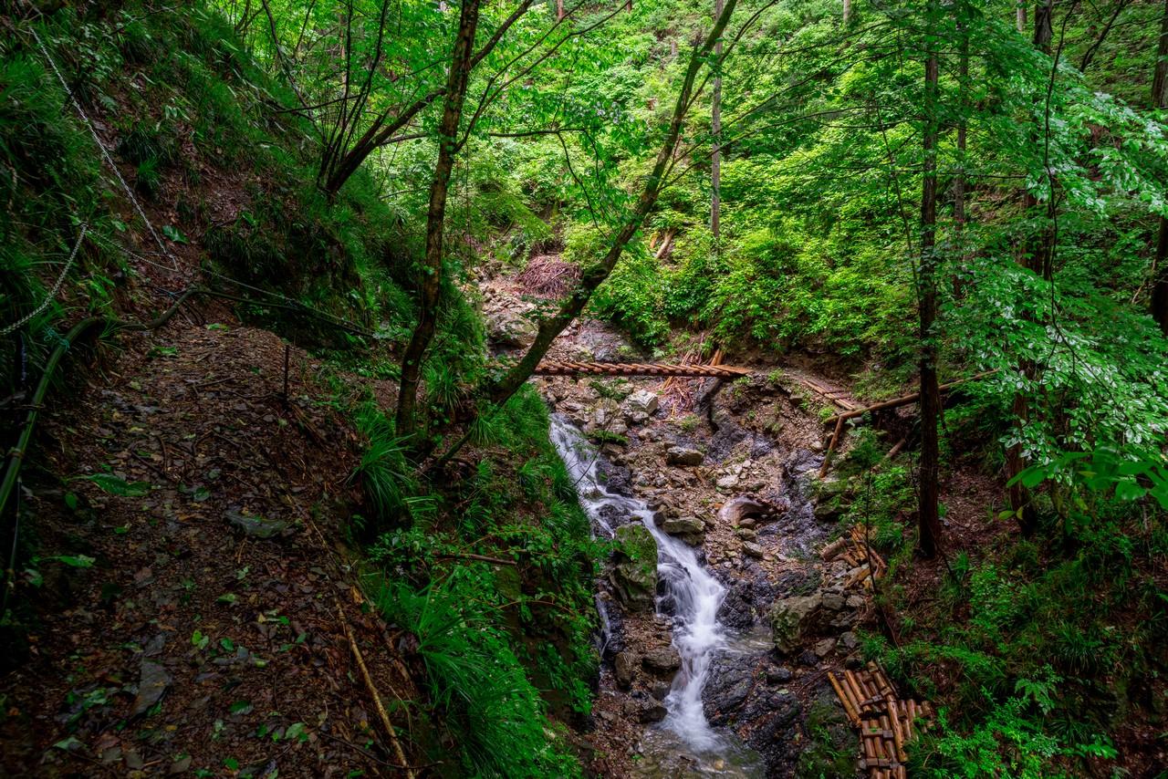 200726檜原滝巡り-051