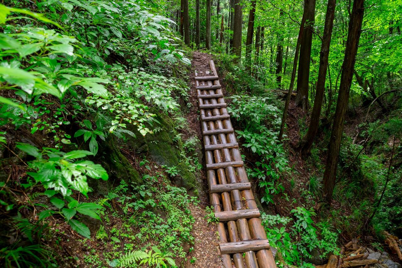 200726檜原滝巡り-052