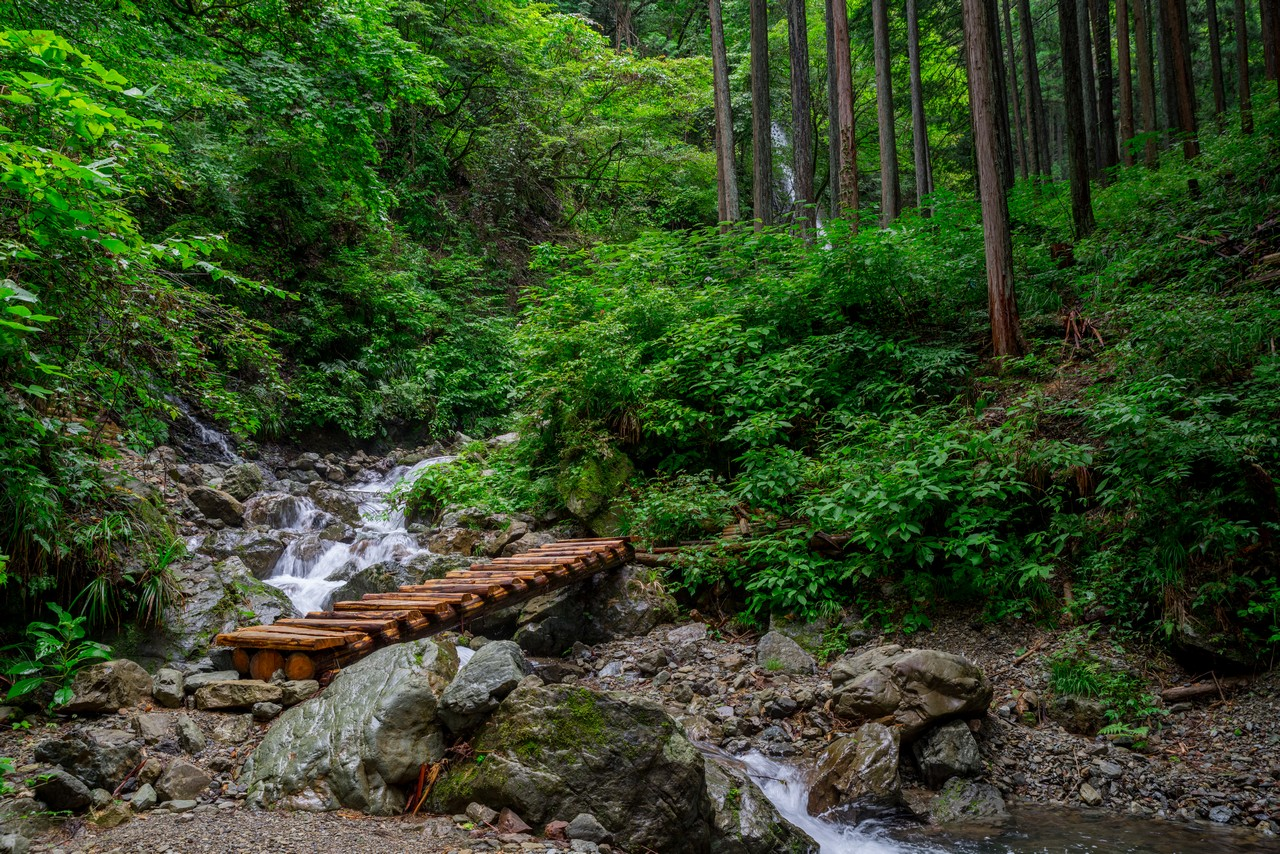 200726檜原滝巡り-054