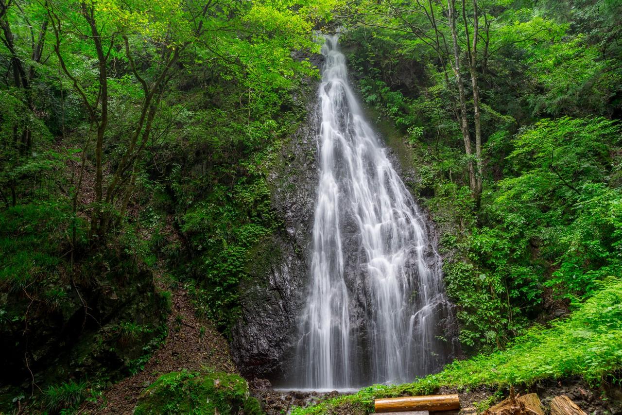 200726檜原滝巡り-056