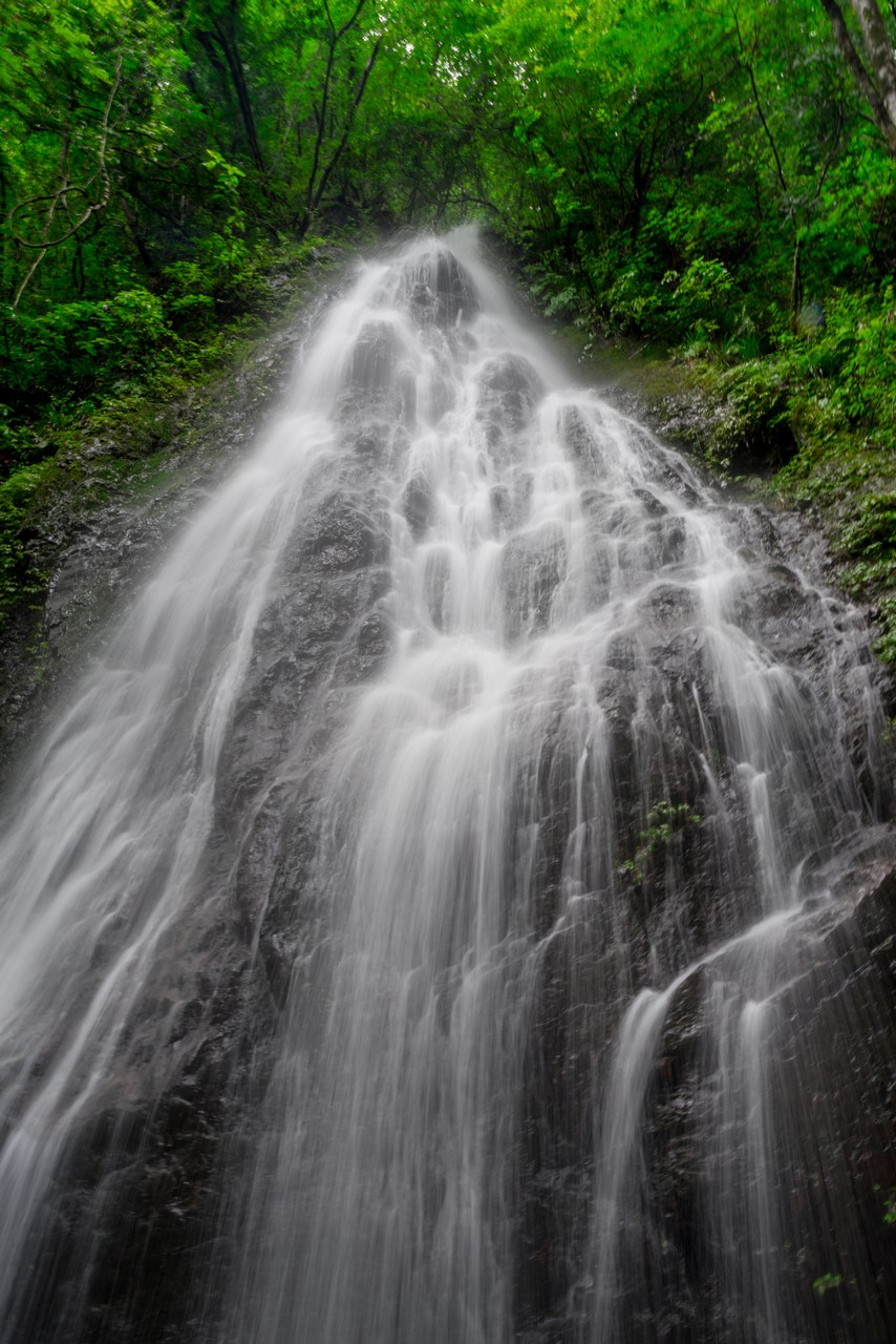 200726檜原滝巡り-057