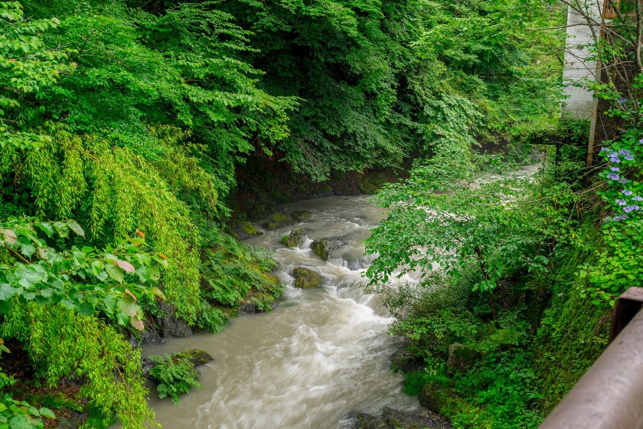200726檜原滝巡り-061