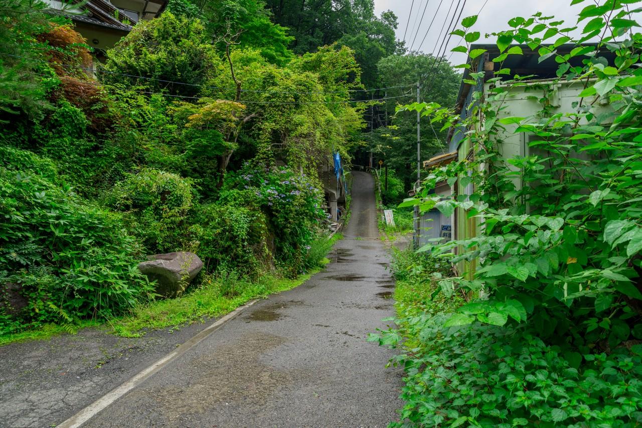 200726檜原滝巡り-062