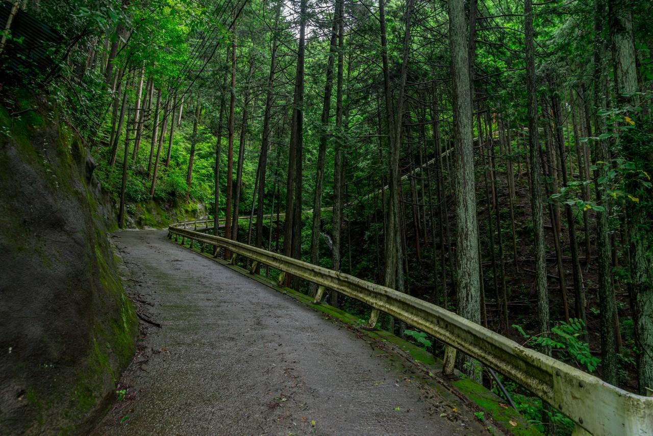 200726檜原滝巡り-063