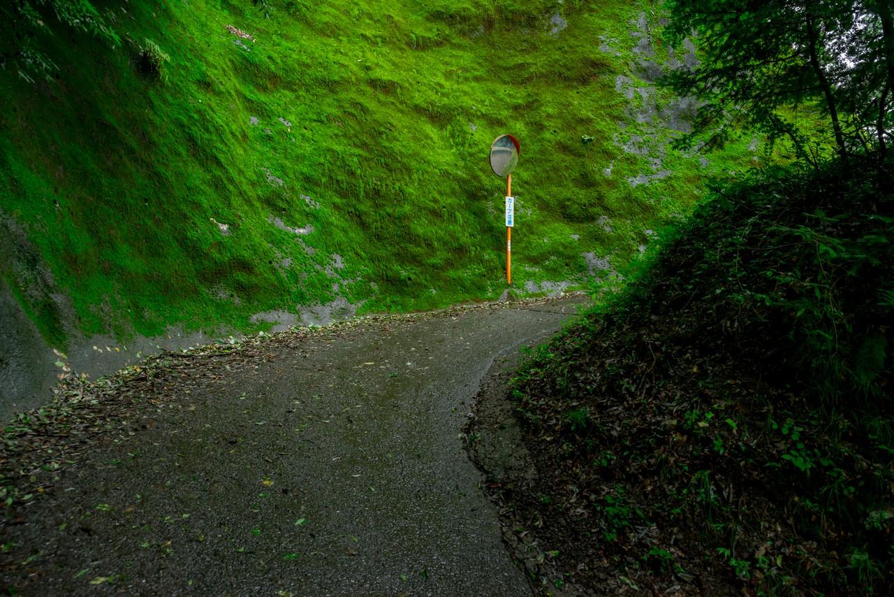 200726檜原滝巡り-064