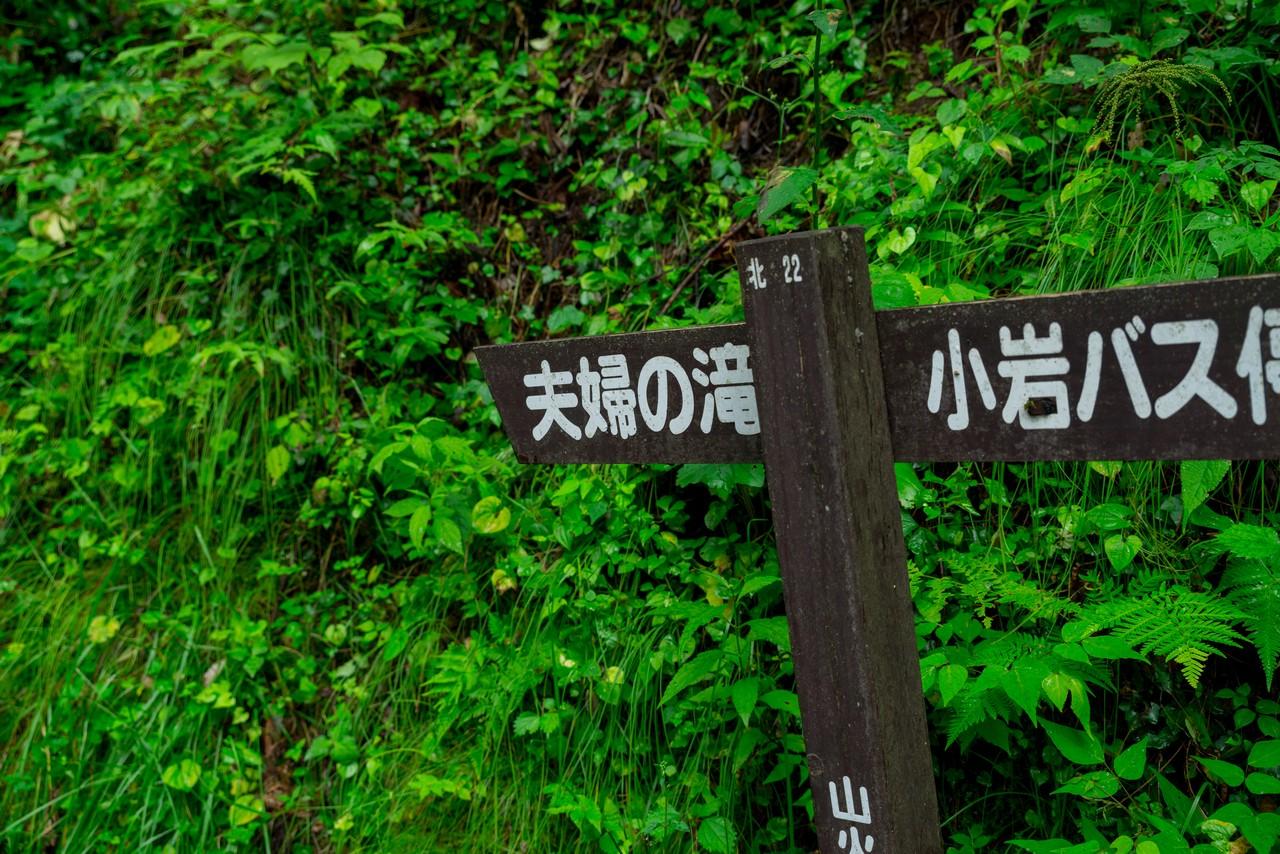 200726檜原滝巡り-066