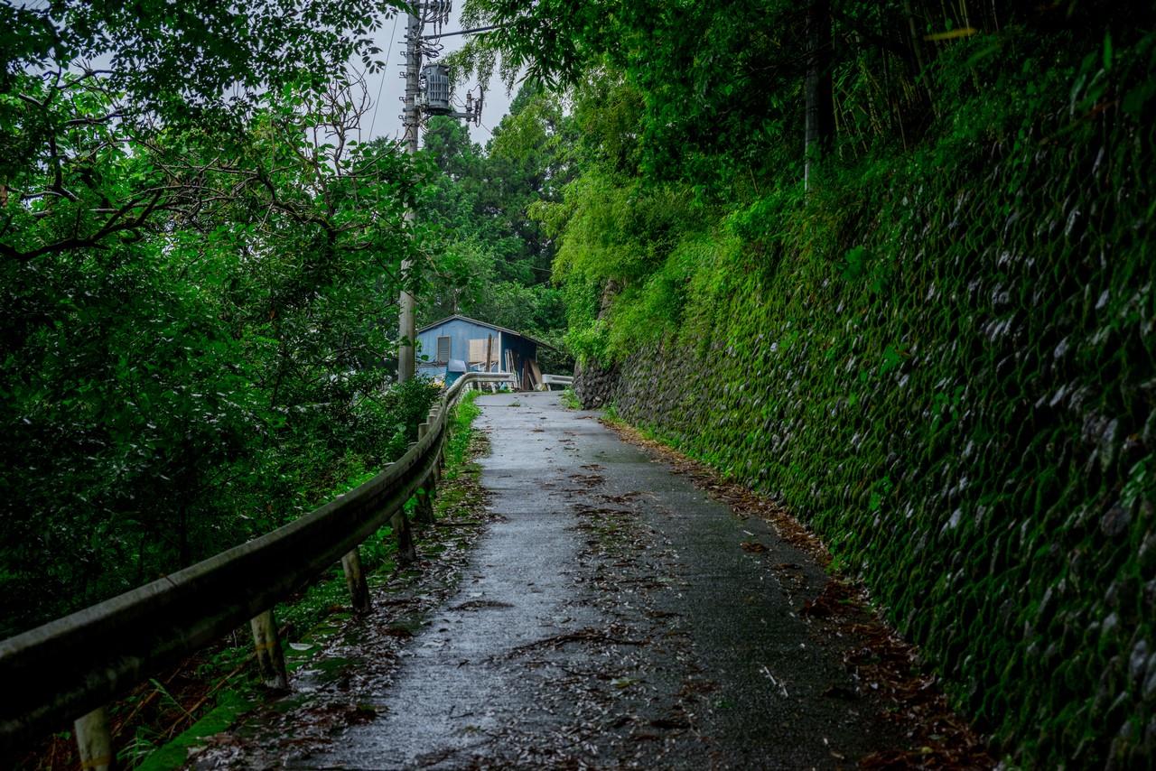 200726檜原滝巡り-067