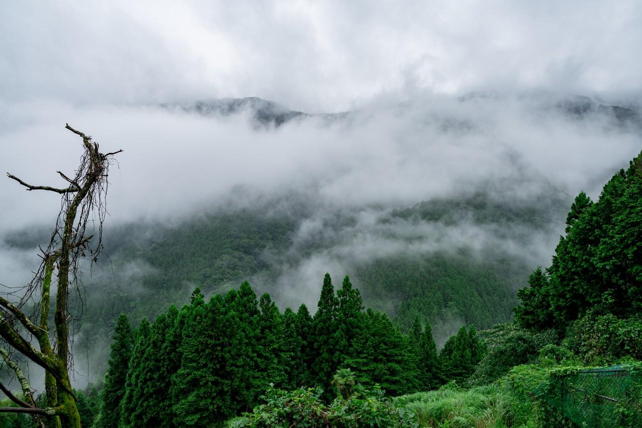 200726檜原滝巡り-068