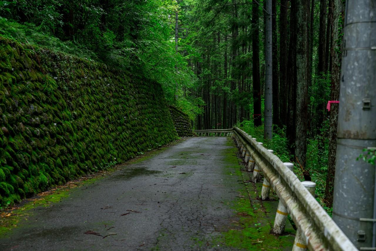 200726檜原滝巡り-069
