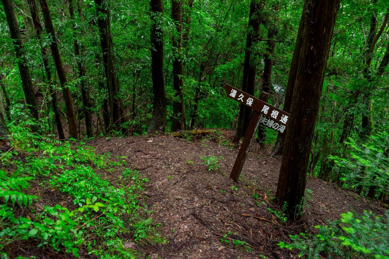 200726檜原滝巡り-072