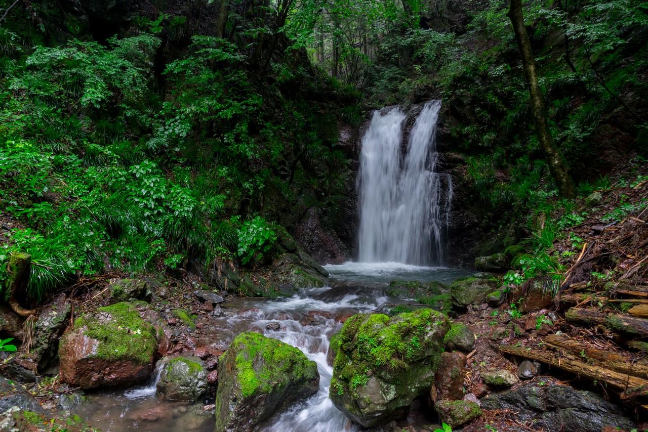 200726檜原滝巡り-074