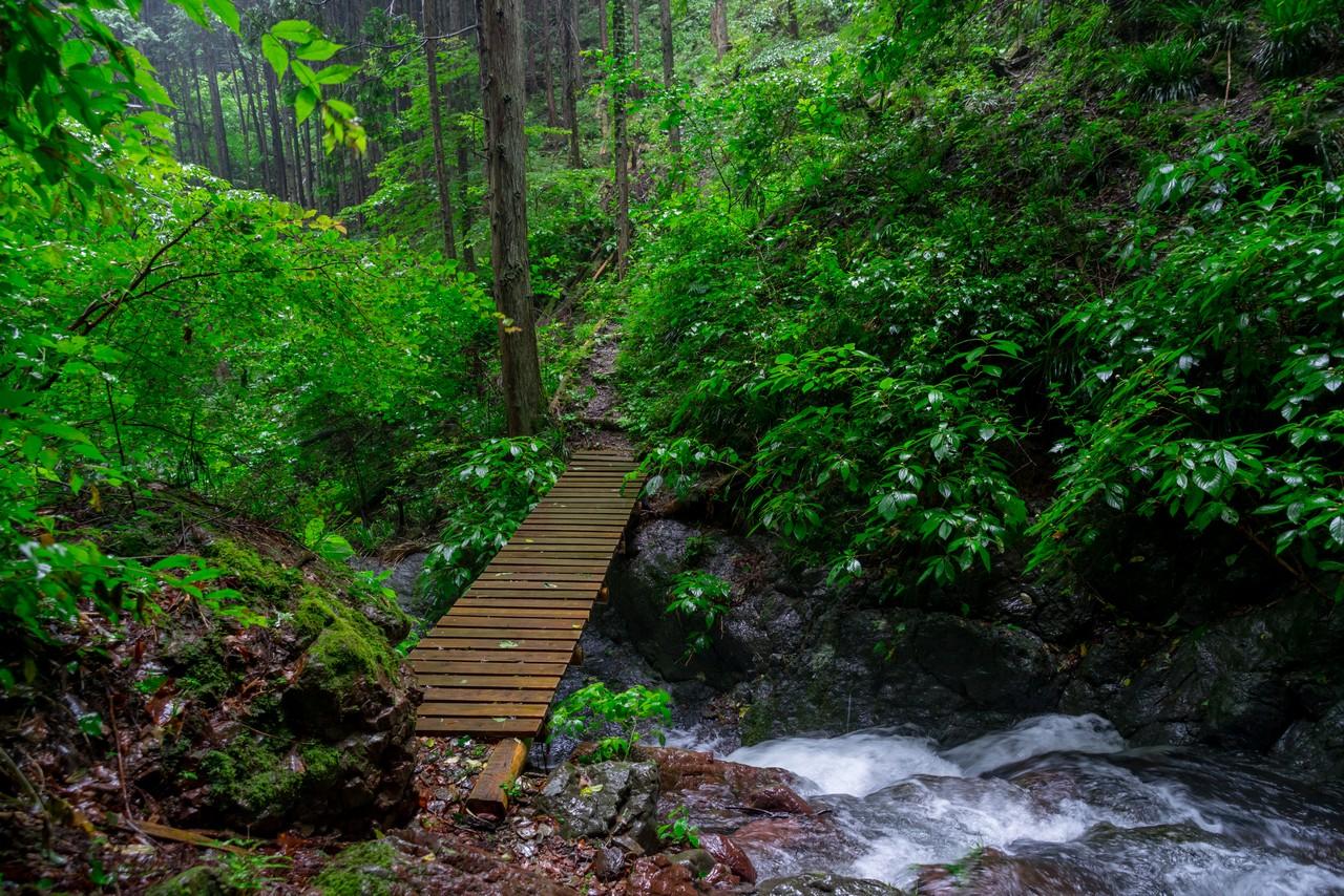 200726檜原滝巡り-076