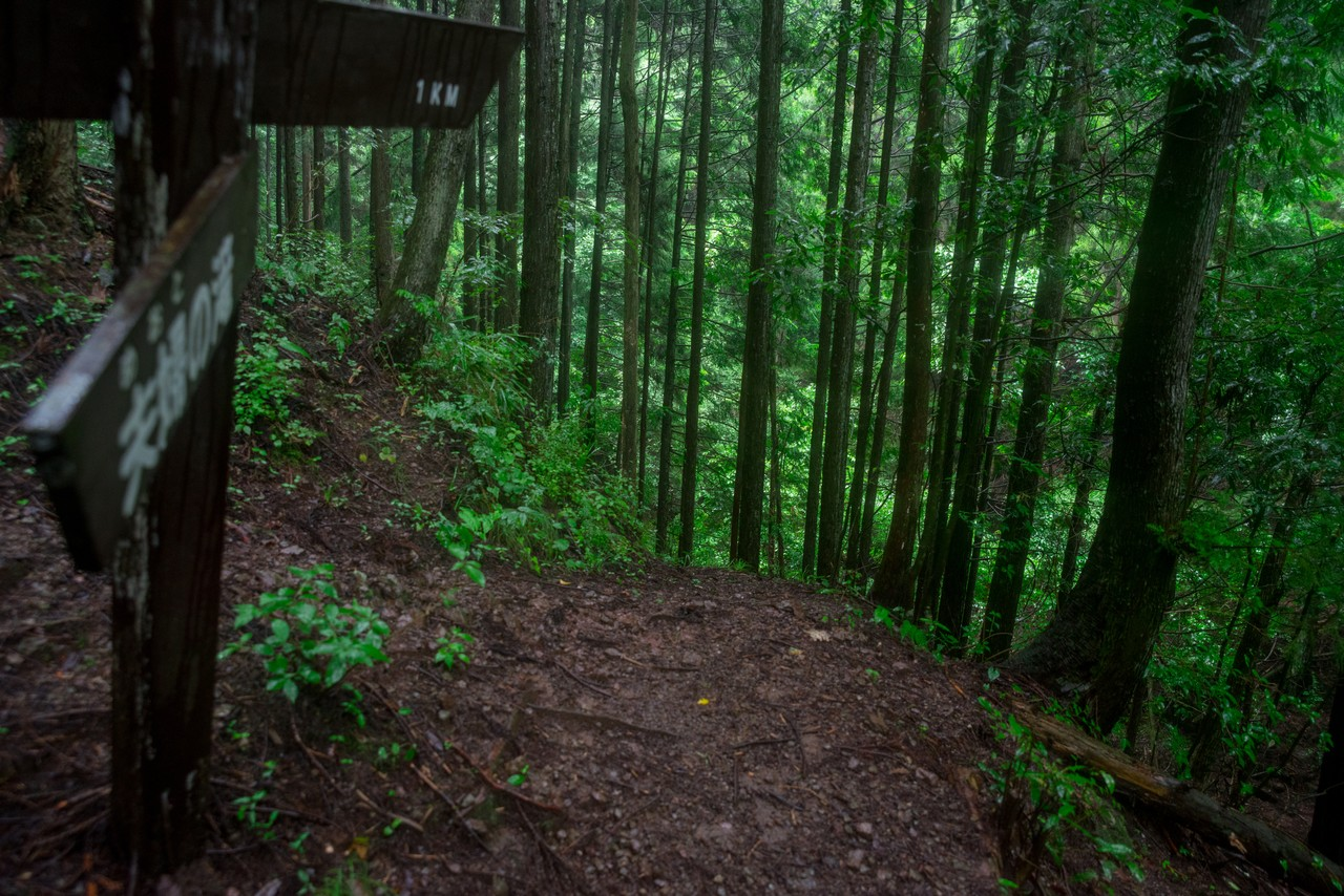 200726檜原滝巡り-077