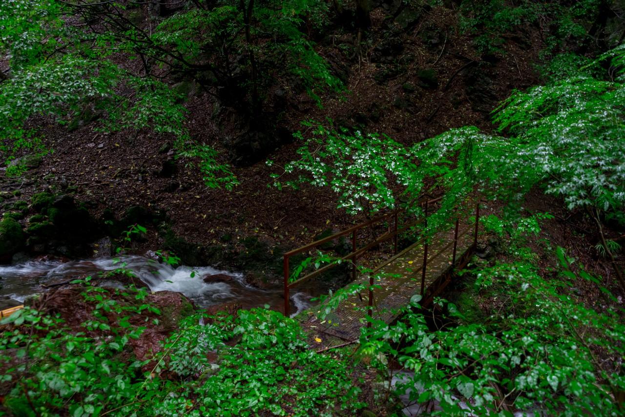 200726檜原滝巡り-078