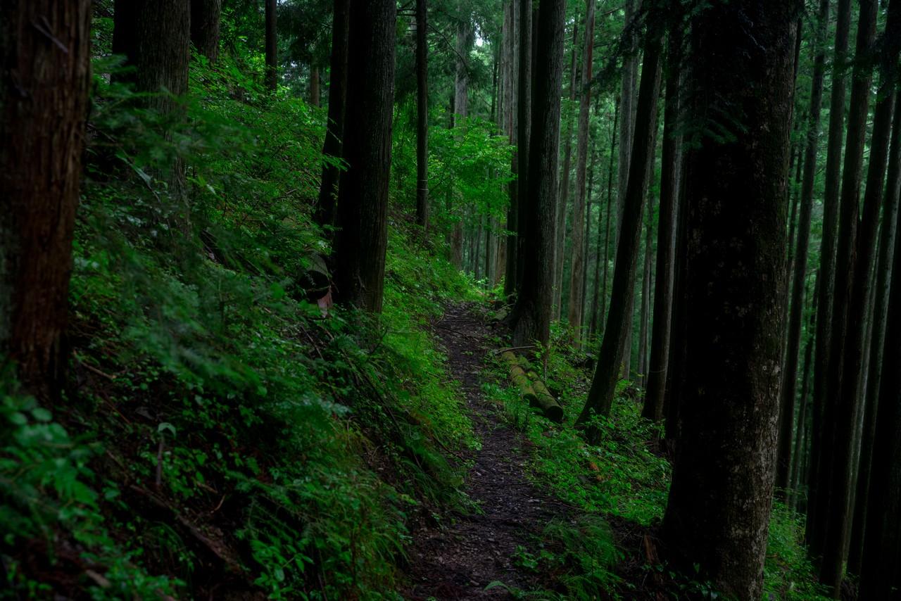 200726檜原滝巡り-081
