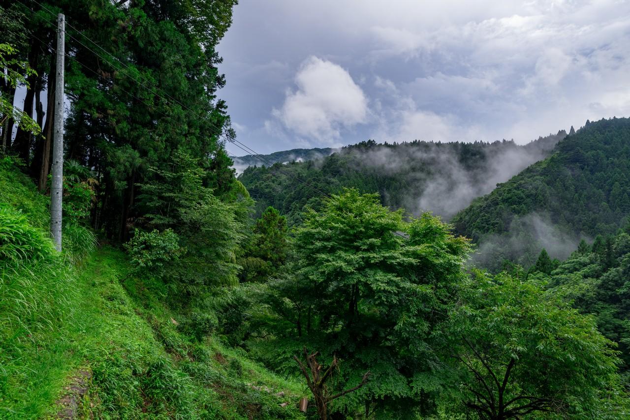 200726檜原滝巡り-082