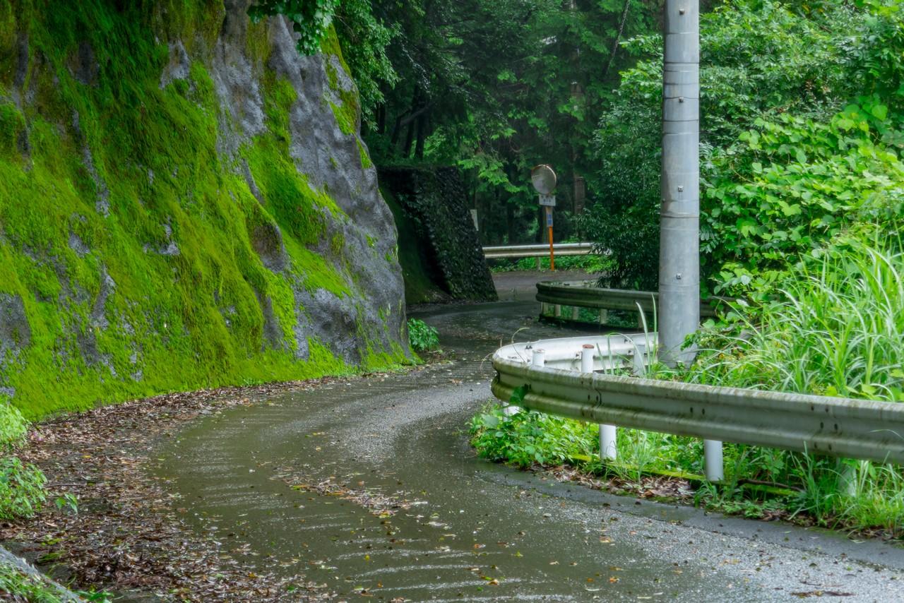 200726檜原滝巡り-087