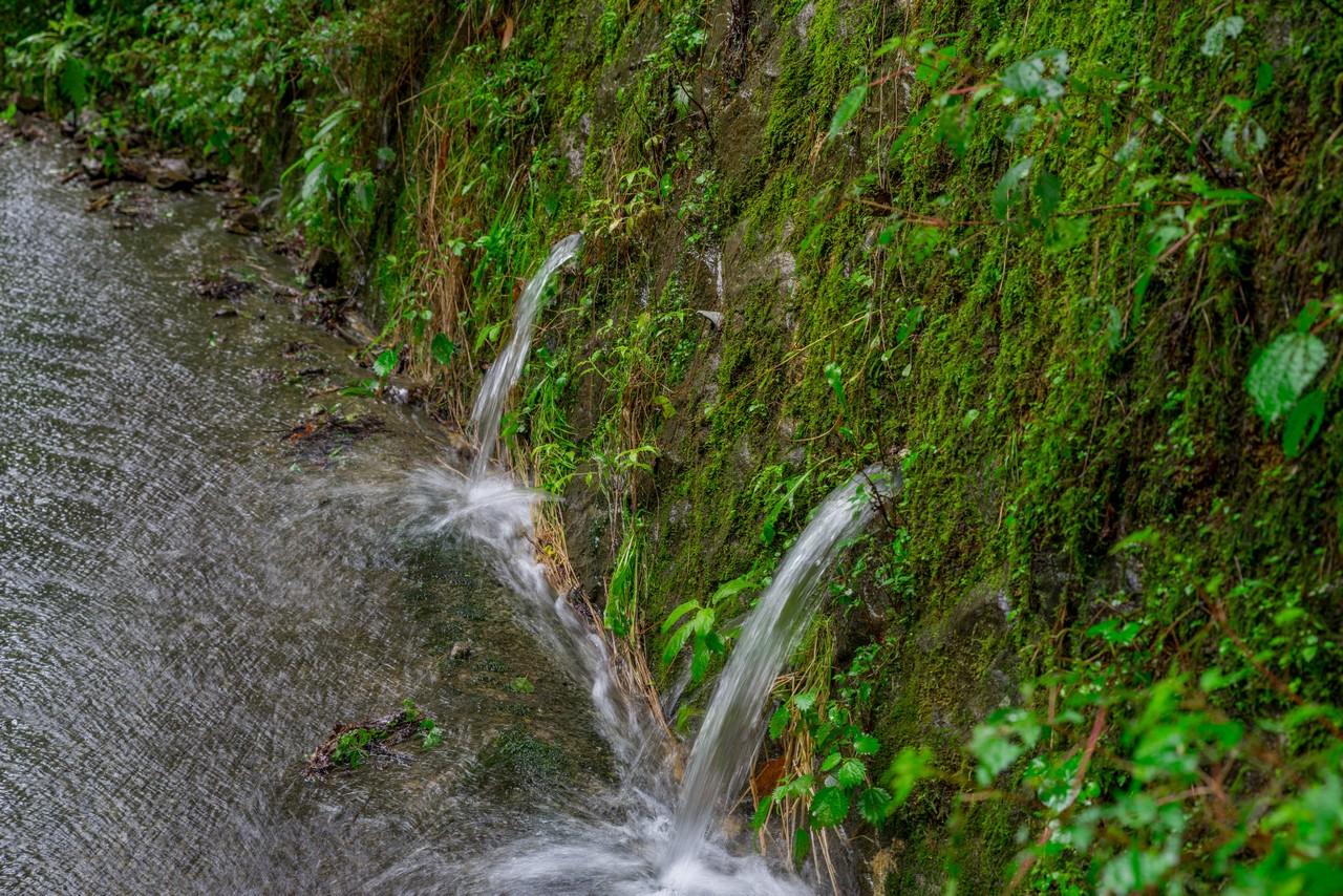 200726檜原滝巡り-096