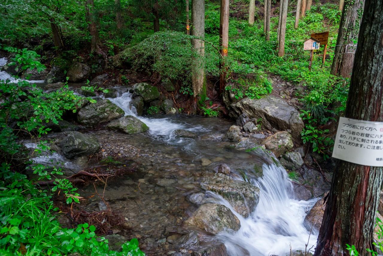200726檜原滝巡り-098