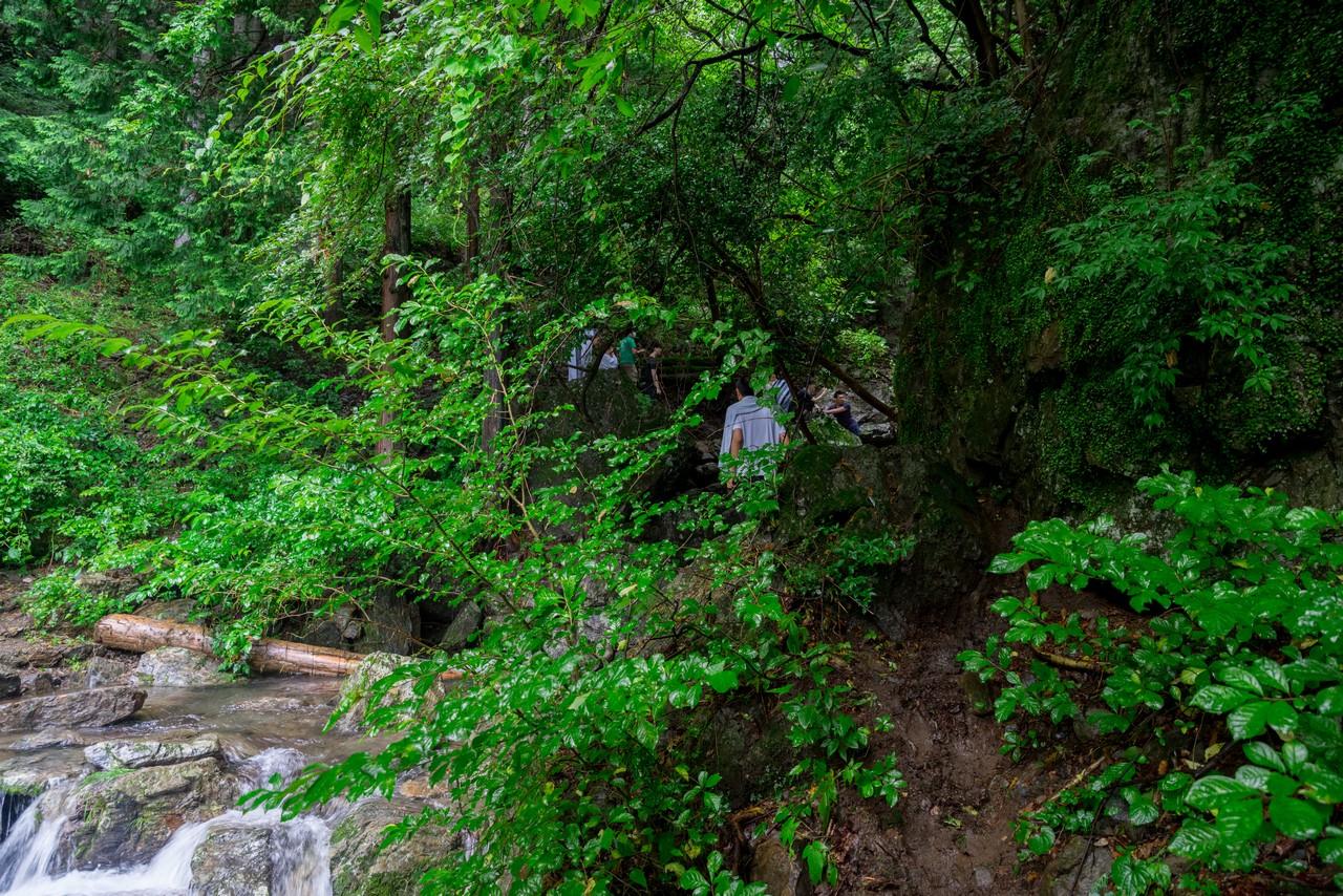 200726檜原滝巡り-102