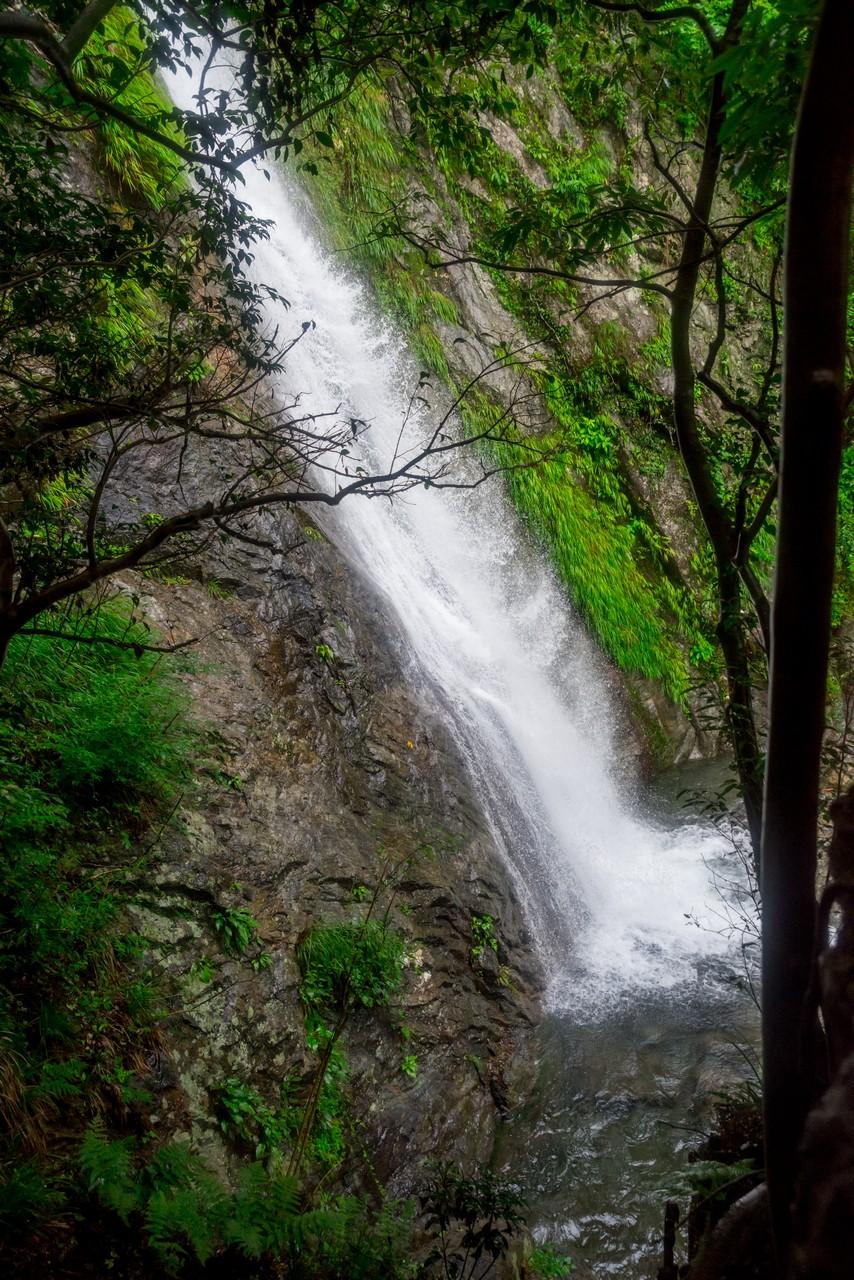 200726檜原滝巡り-105