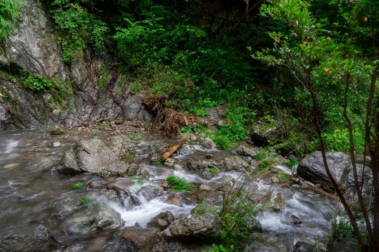 200726檜原滝巡り-108
