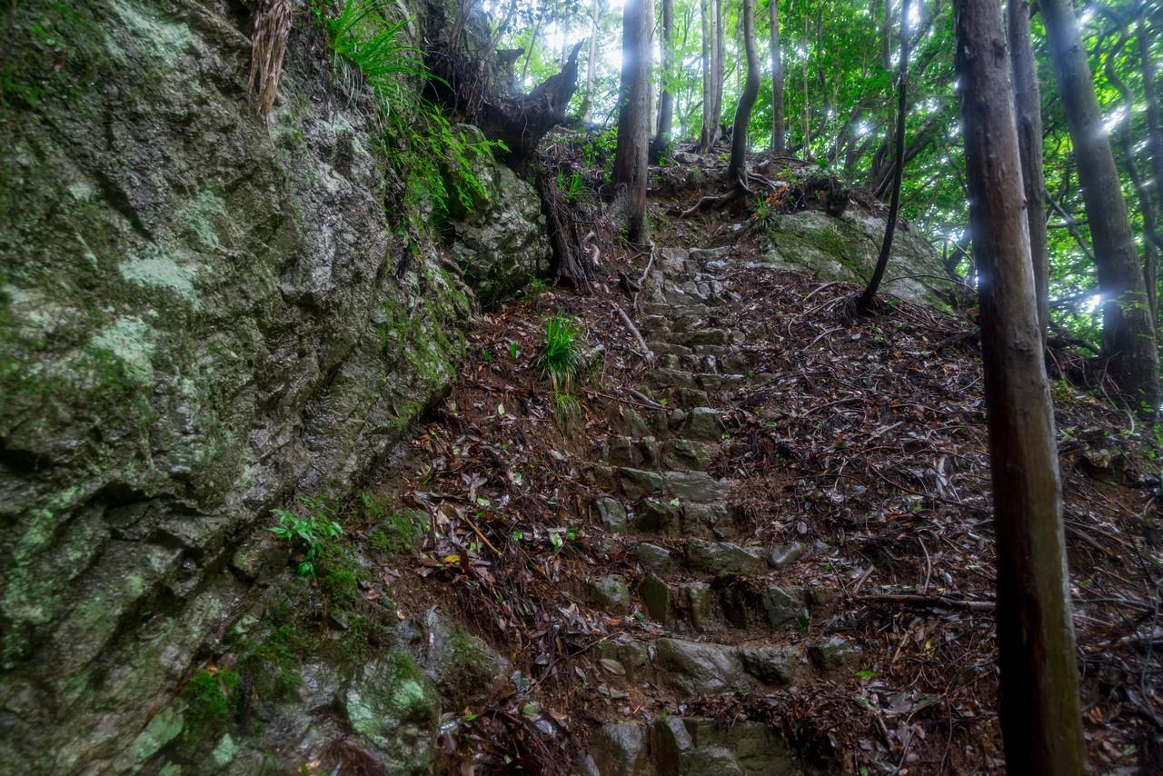 200726檜原滝巡り-109
