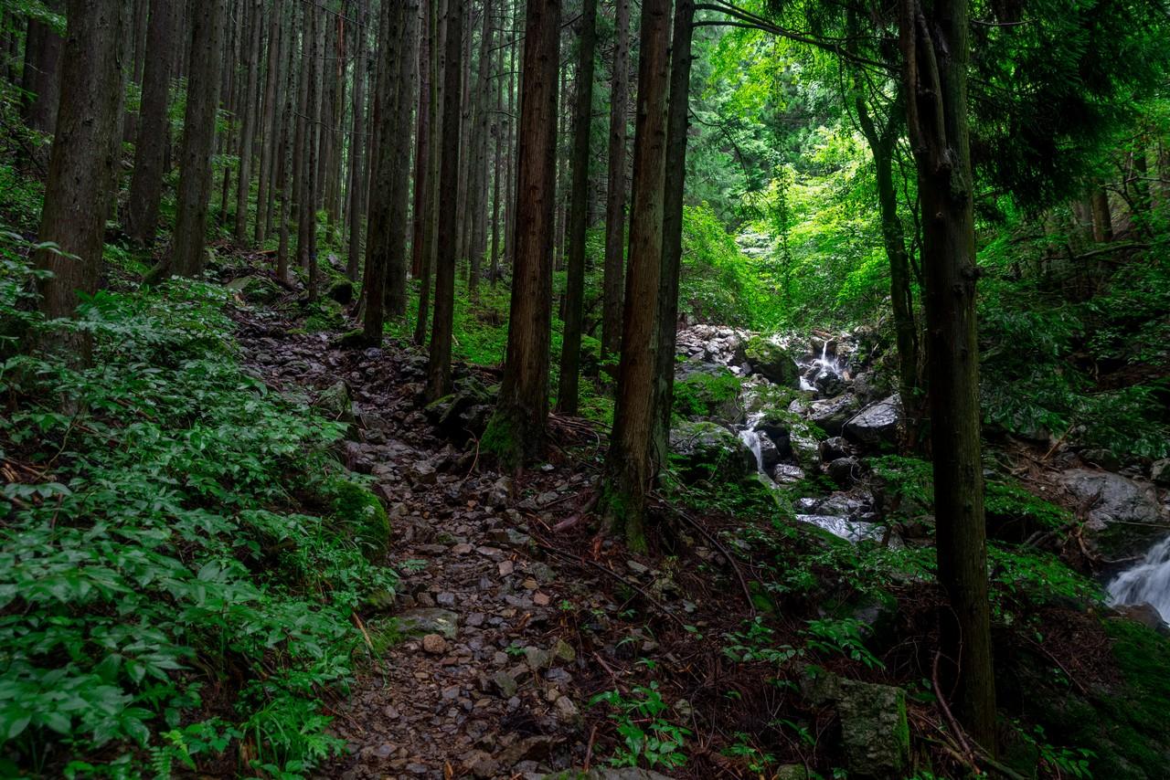 200726檜原滝巡り-111