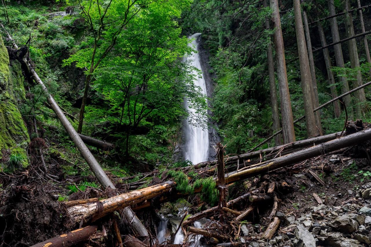 200726檜原滝巡り-112