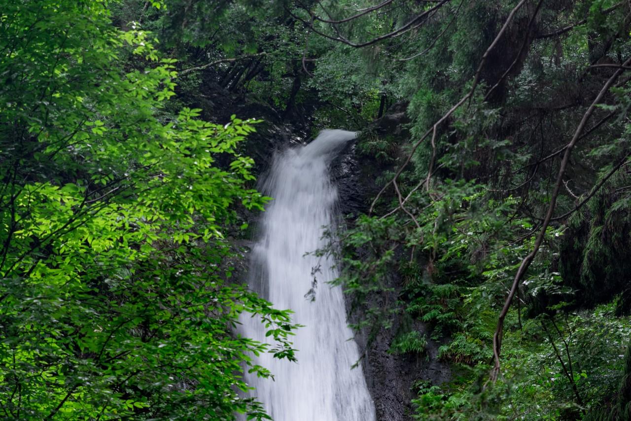 200726檜原滝巡り-113