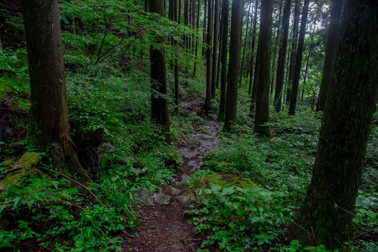 200726檜原滝巡り-114