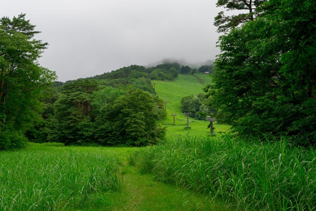 200802磐梯山-022