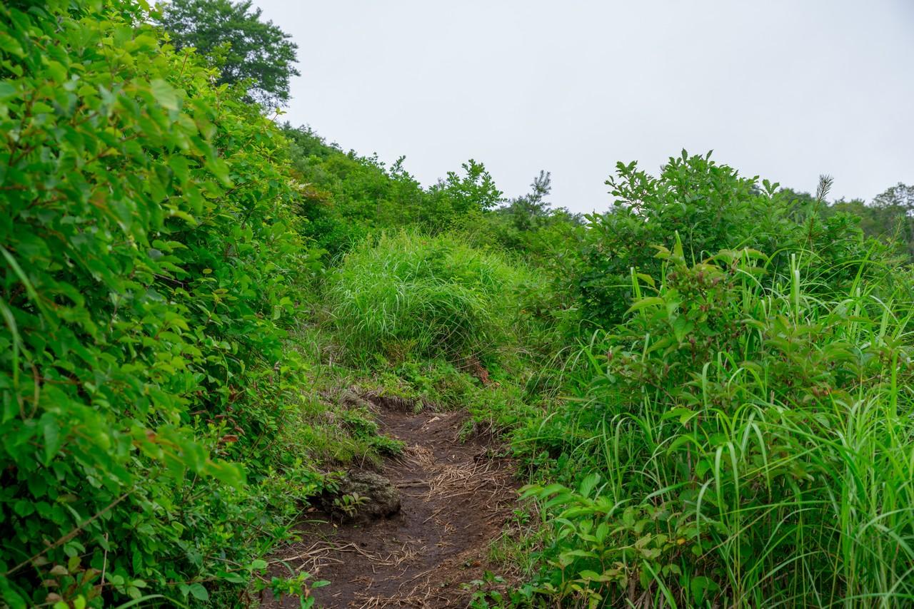 200802磐梯山-028