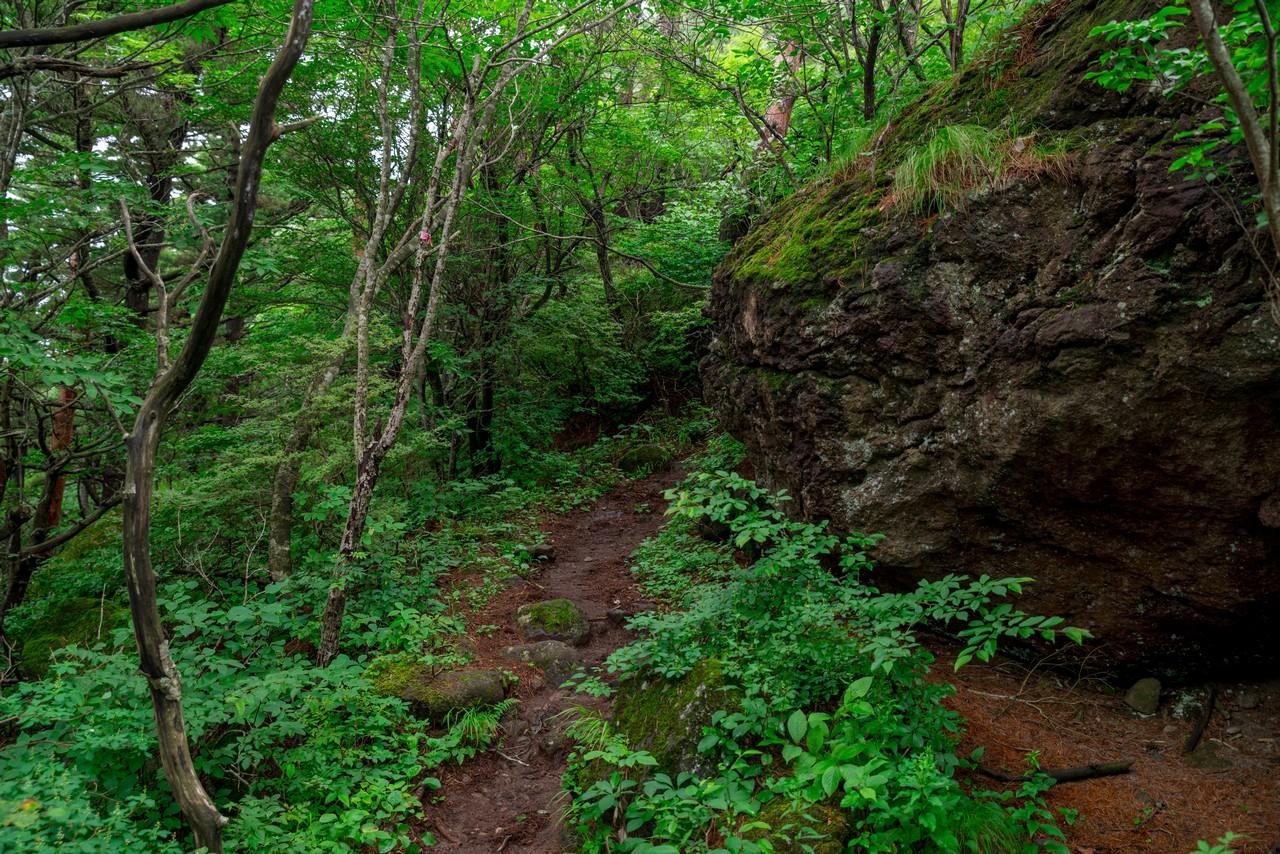 200802磐梯山-029