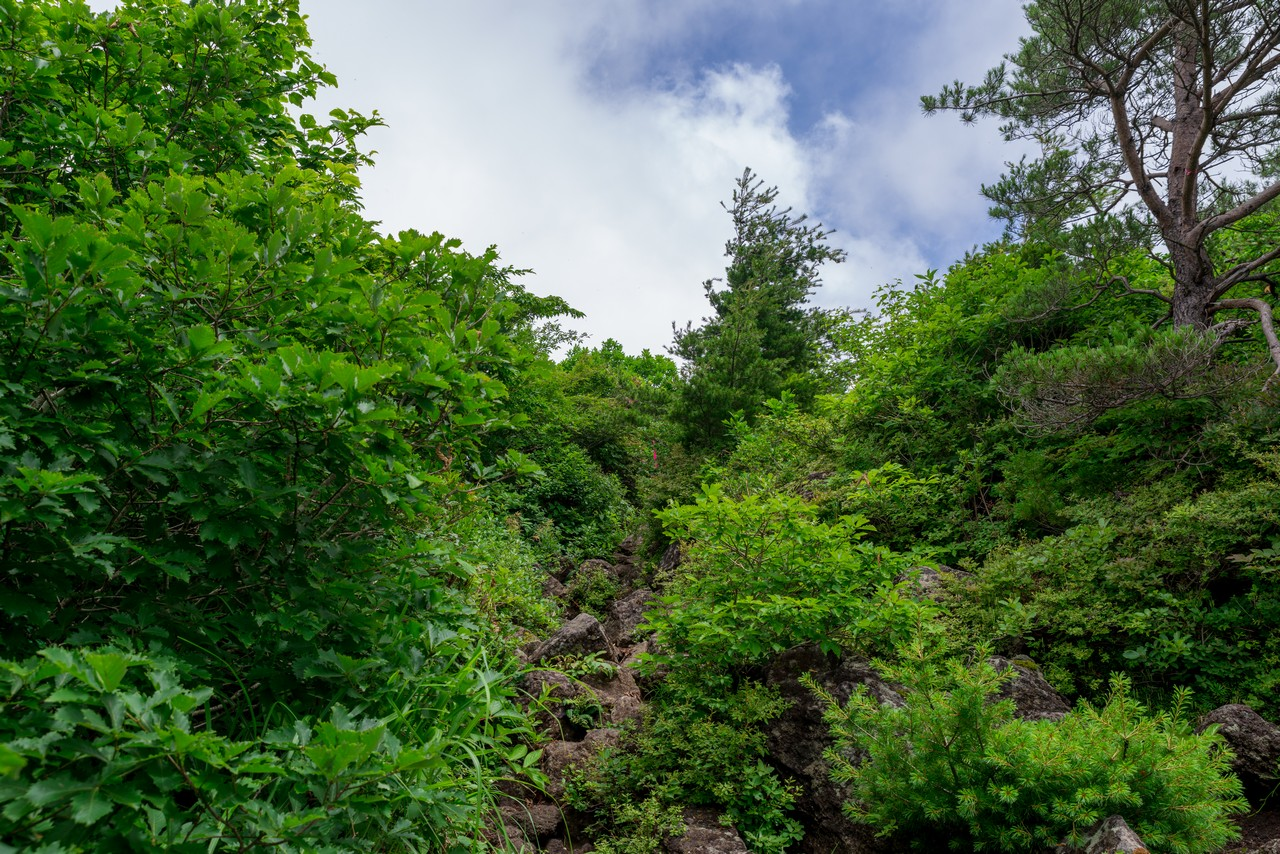 200802磐梯山-032