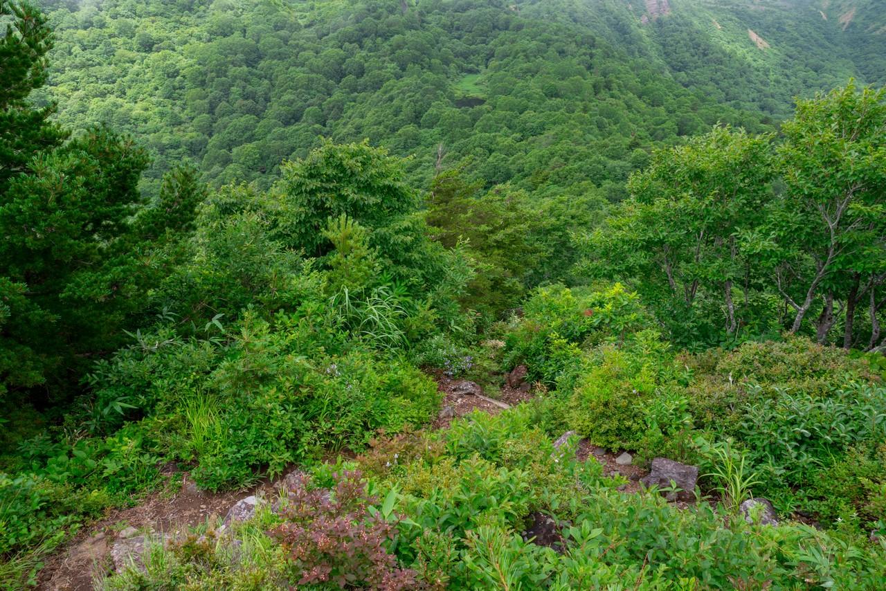 200802磐梯山-041