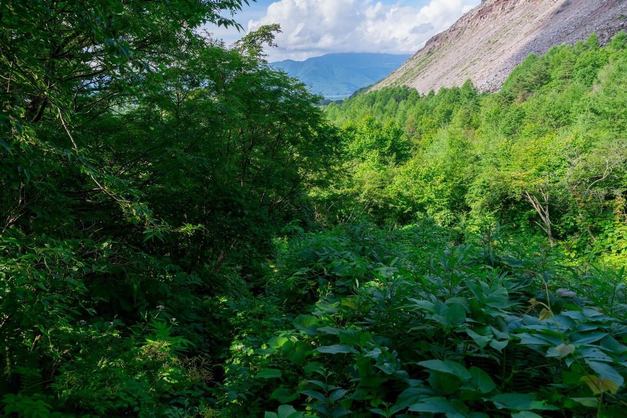 200802磐梯山-094