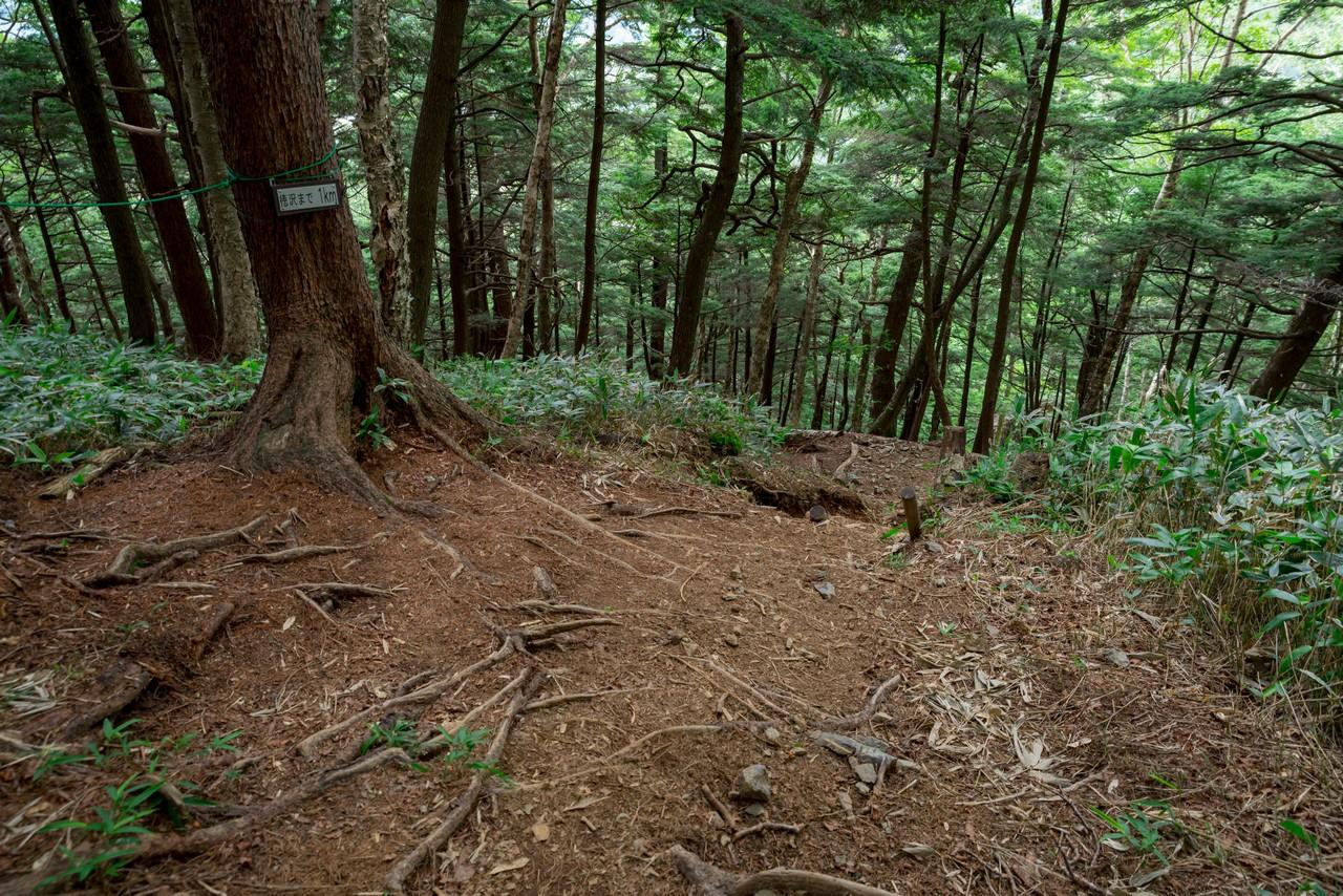 200810蝶ヶ岳-086