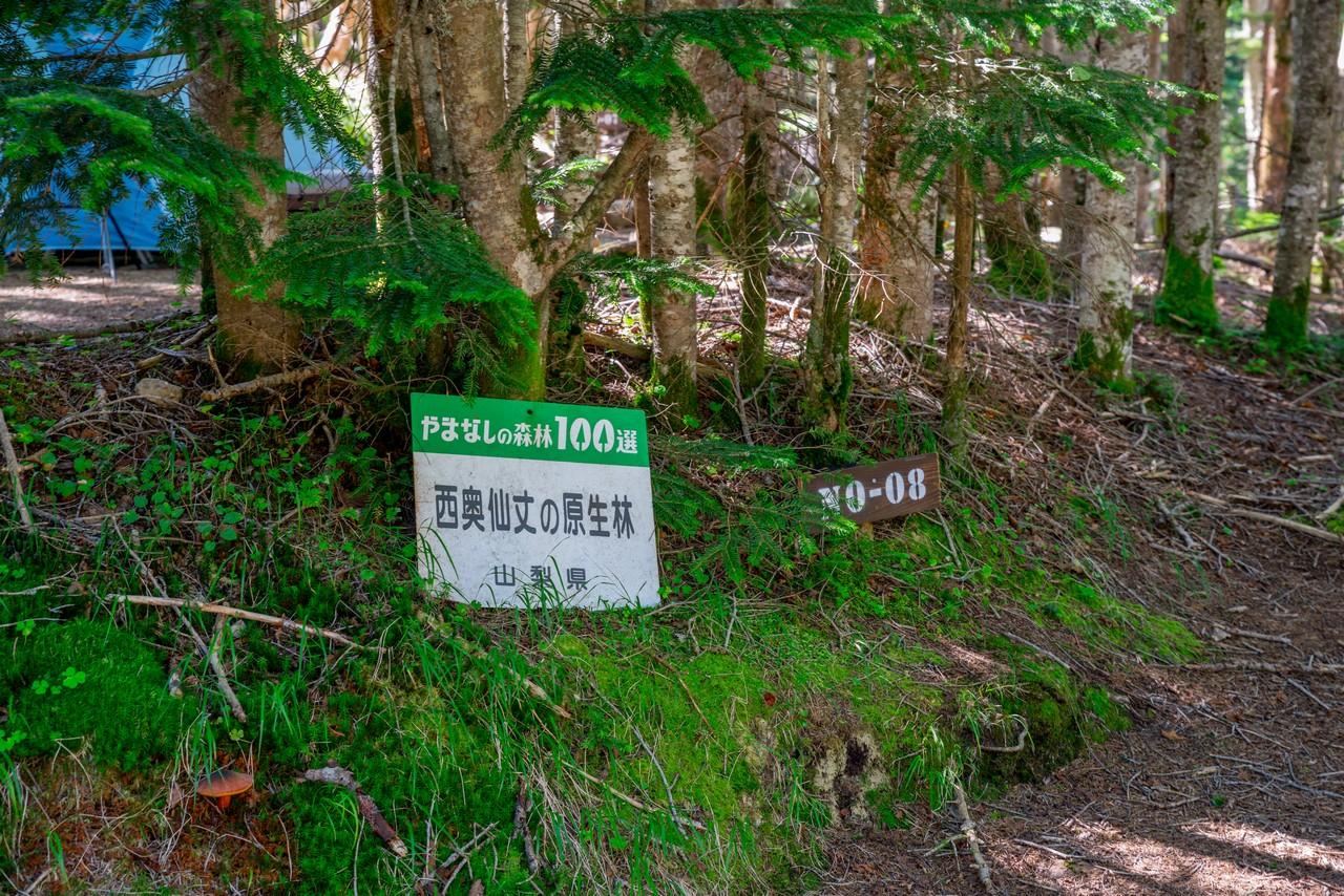 200815金峰山-014