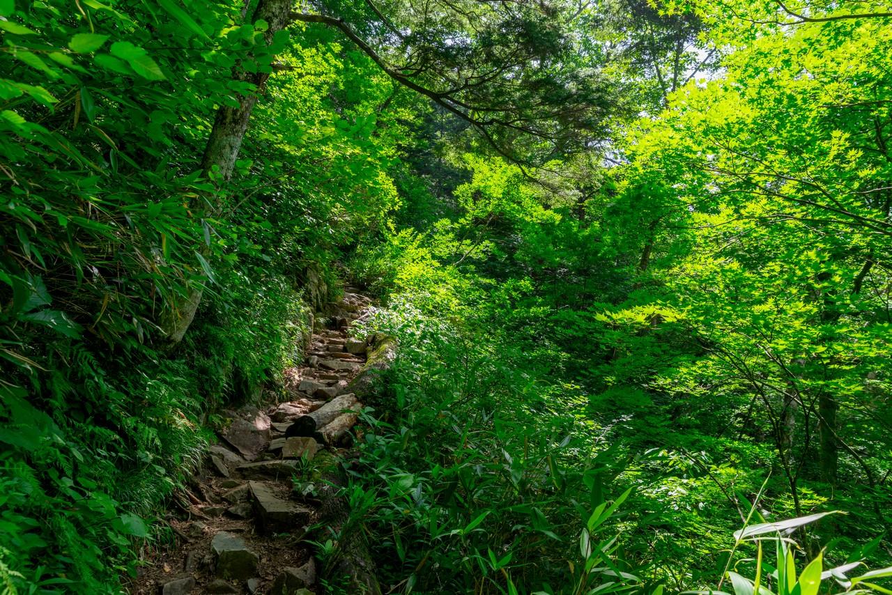 200818鹿島槍ヶ岳-018