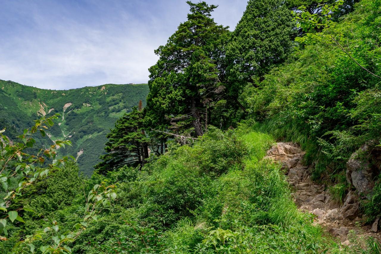200818鹿島槍ヶ岳-024