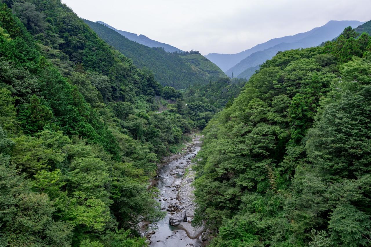 200823御岳山-014