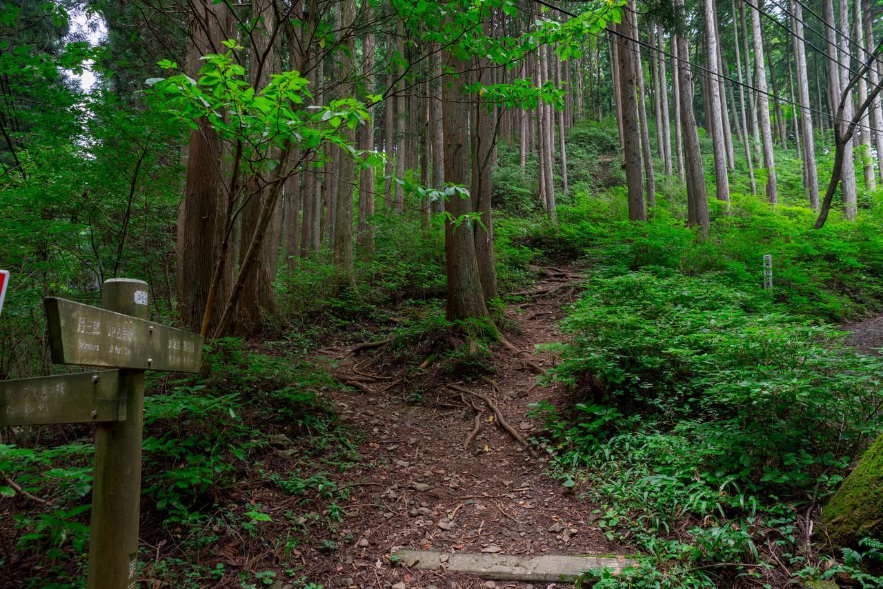 200823御岳山-039