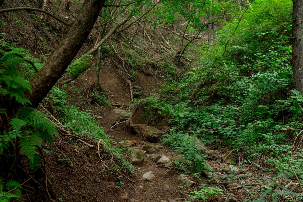 200829浅間隠山-051