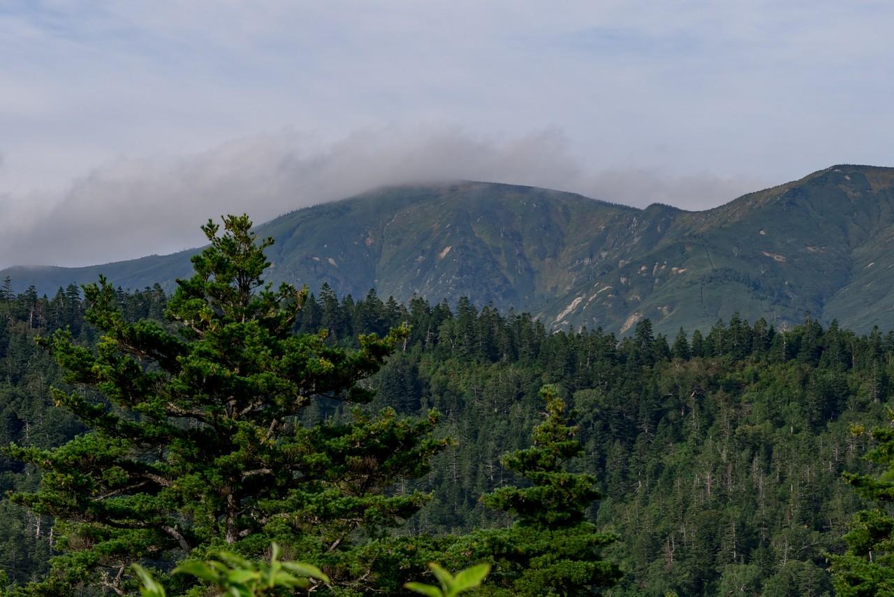 200922平ヶ岳-040