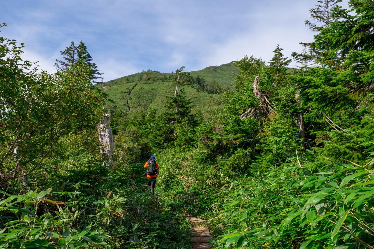 200922平ヶ岳-047