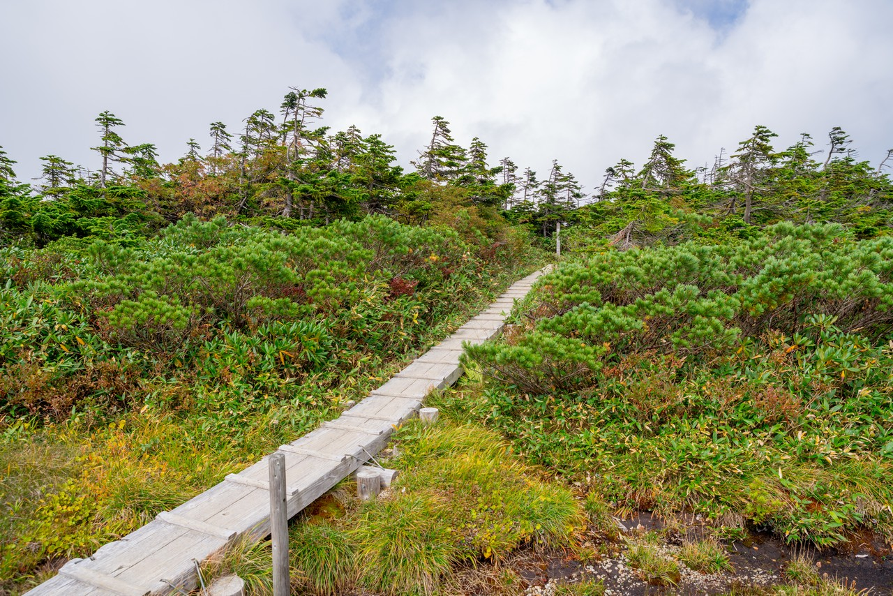 200922平ヶ岳-061