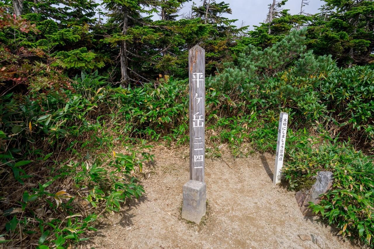 200922平ヶ岳-062