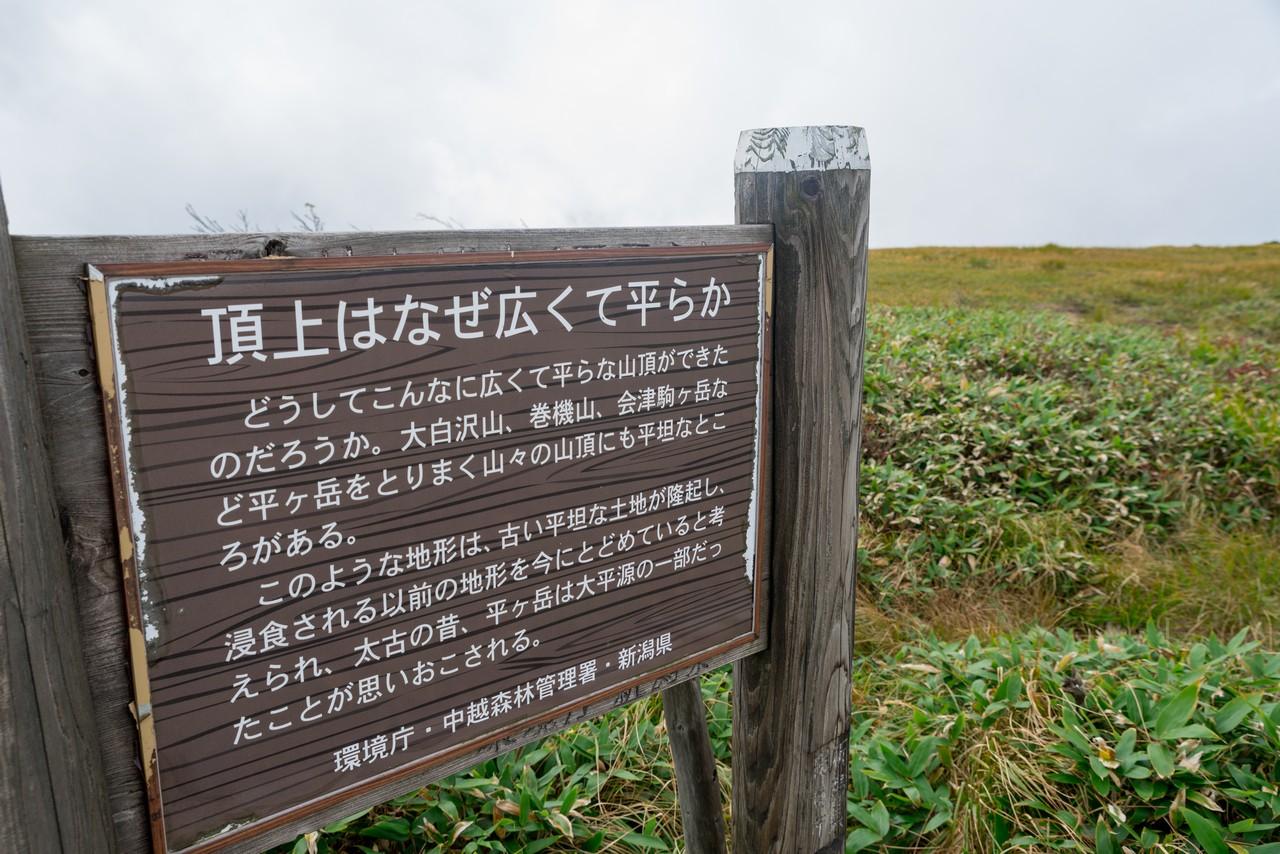 200922平ヶ岳-064